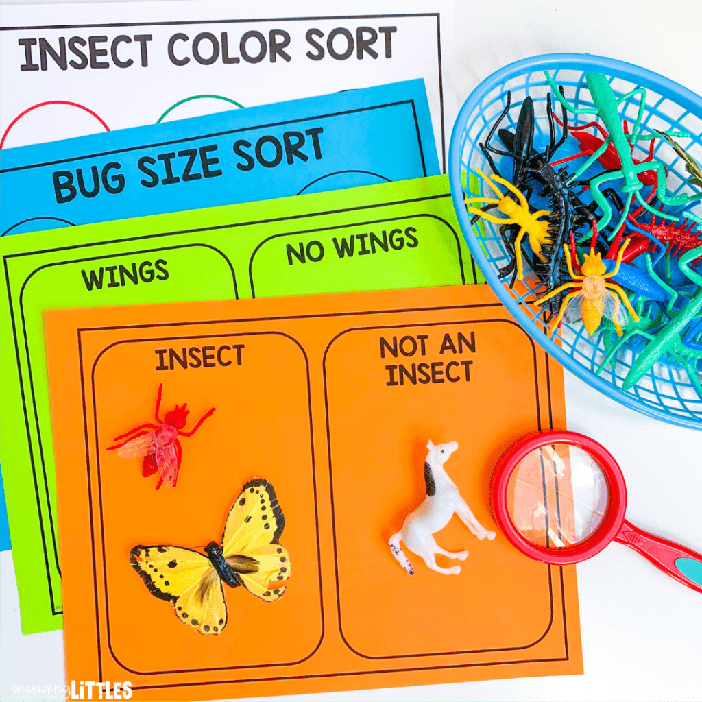 insect sorting center